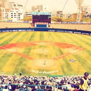 高校野球。横浜高校at横浜スタジアム