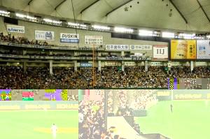 凄い熱気の阪神ファン